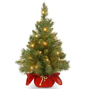 majestic spruce cloth bag tree with 35 battery operated led light - Tabletop Christmas Trees With Lights