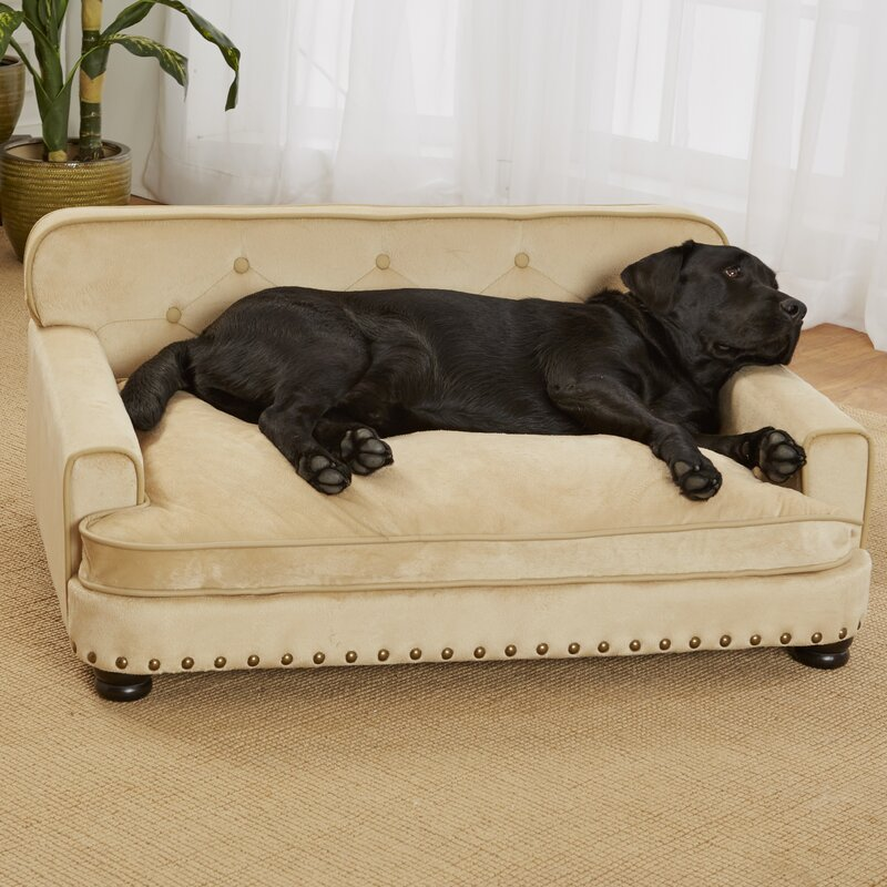 sofa for dog what is the best couch fabric for your dog kovi thesofa. Black Bedroom Furniture Sets. Home Design Ideas