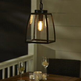 Outdoor hanging lights youll love wayfair silver gulch 1 light outdoor pendant mozeypictures Images