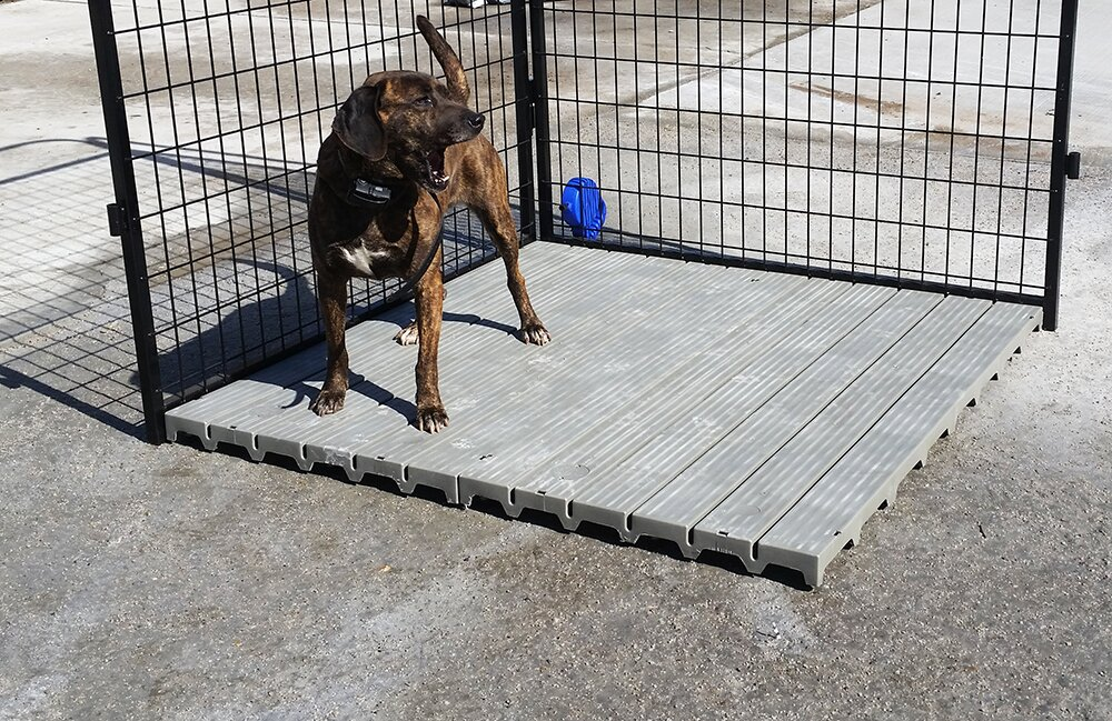 Tucker Murphy Pet Hawley Section Yard Kennel Raised