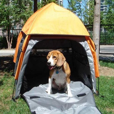 Umbrella Tent Yard Kennel & PetEgo Umbrella Tent Yard Kennel u0026 Reviews | Wayfair