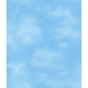 Walt Disney Kids II  33' x 24 Clouds Wallpaper