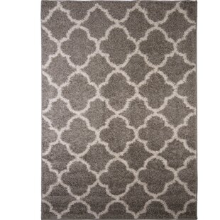 Synergy Gray/White Area Rug By Nicole Miller