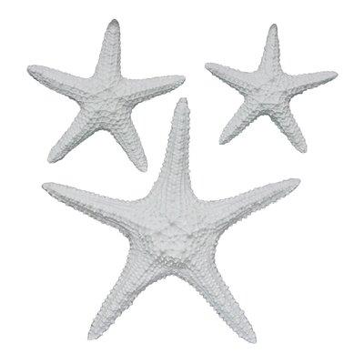 Yelton 3 Piece Starfish Wall Décor Set