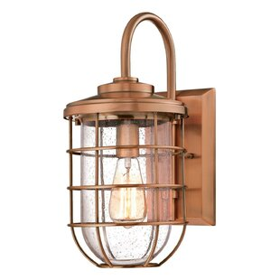 outdoor cage light sconce woolverton 1light 60w cage outdoor wall lantern light wayfair