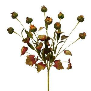 Silk Dried Prairie Pod With Faux Leaves