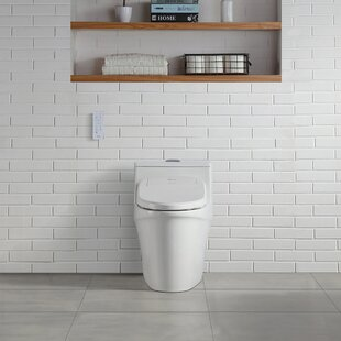 Siege De Toilette Bidet Wayfair Ca