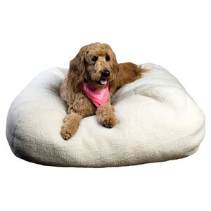 Aria Pet Bed