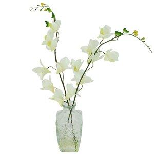 Orchids Floral Arrangements in Decorative Vase