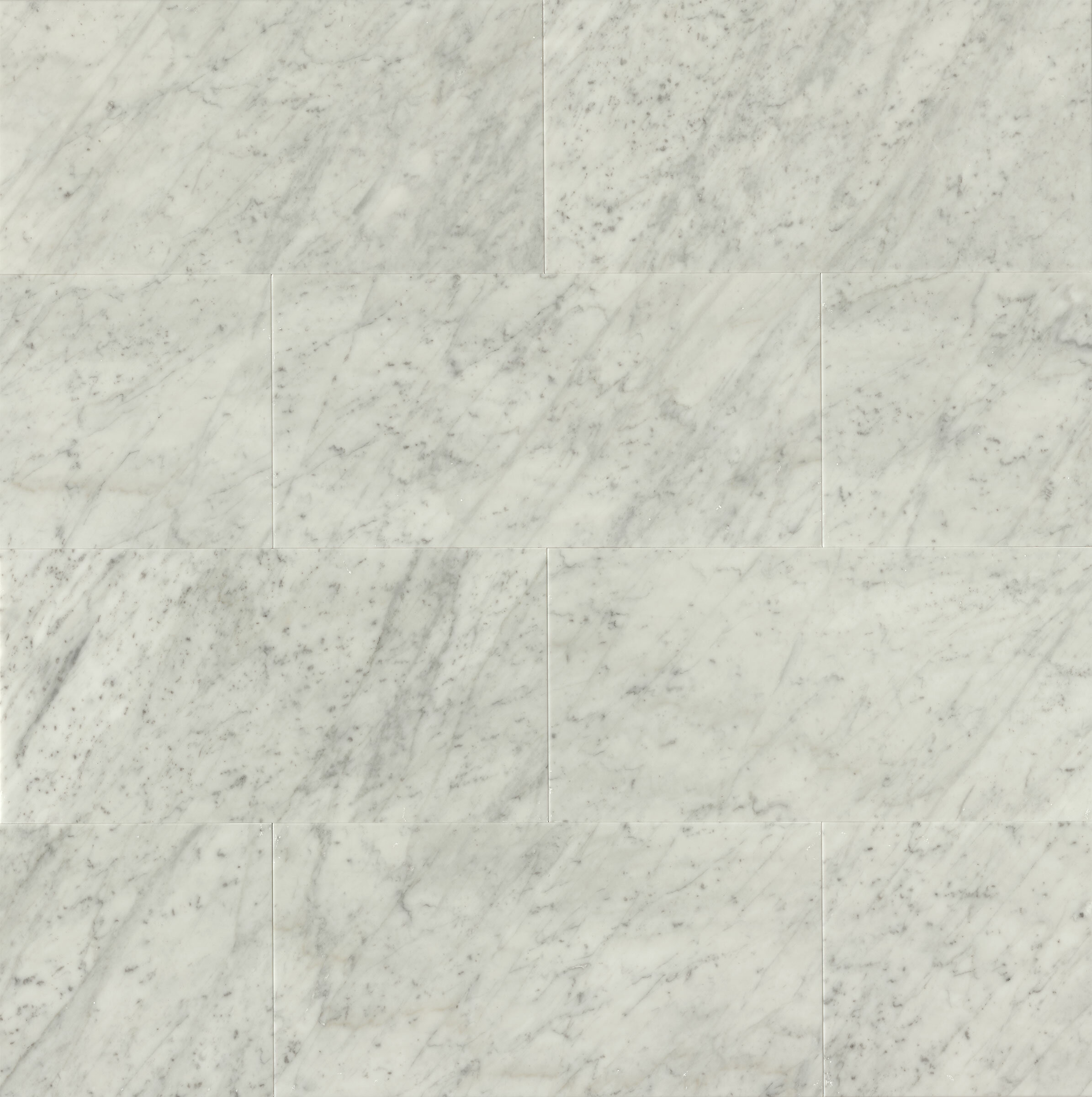 12 X 24 Marble Field Tile In Polished White Carrara