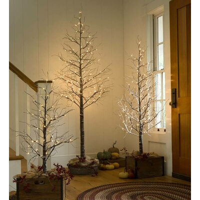 artificial trees you 39 ll love wayfair. Black Bedroom Furniture Sets. Home Design Ideas