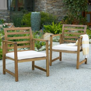 Delicieux Gaynelle Outdoor Arm Chair With Cushion (Set Of 2)