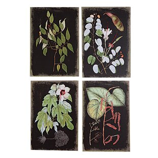 u0027Botanicalu0027 4 Piece Graphic Art on Canvas Set  sc 1 st  Wayfair & Gallery Wall Art Sets Youu0027ll Love | Wayfair