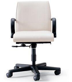 Ergo Desk Chair