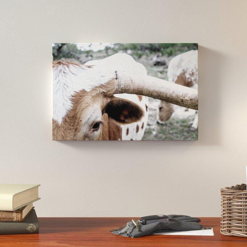 Loon Peak 'Mooh' Photographic Print on Wrapped Canvas