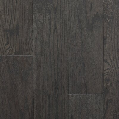 "Reykjavik 5"" Engineered Oak Hardwood Flooring Branton Flooring Collection Finish: Shadow"
