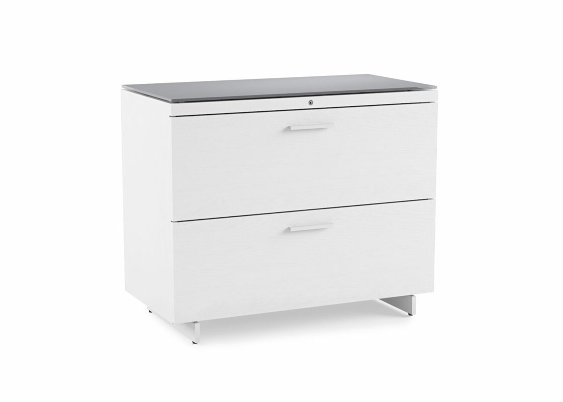 Centro 2 Drawer Lateral File Cabinet Reviews AllModern