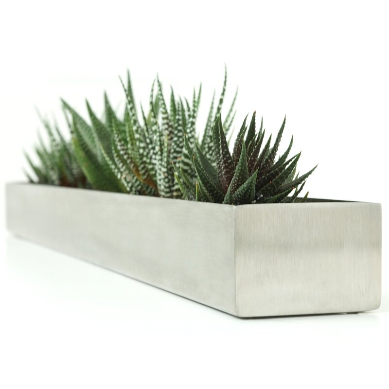 Gus Modern Stainless Steel Planter Box Amp Reviews Wayfair