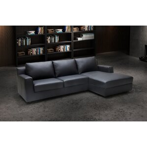 Leather Sleeper Sectional  sc 1 st  Wayfair.com : chaise lounge sleeper sofa - Sectionals, Sofas & Couches