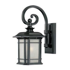 Broadmoor 1-Light Outdoor Wall Lantern