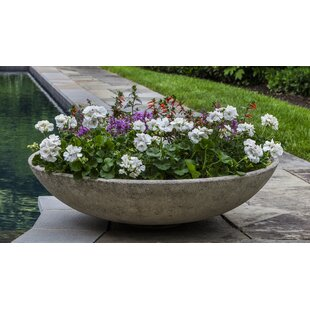 Top Large Outdoor Bowl Planter | Wayfair RB78