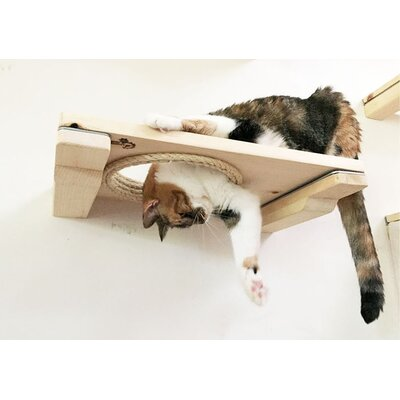 """3"""" Cat Mod Wall-mounted Escape Hatch Catastrophicreations Color: Unfinished"""