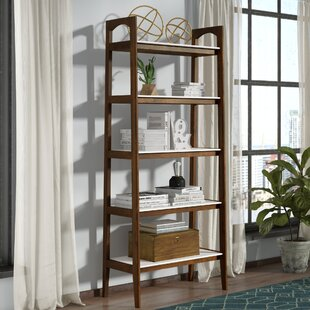 Erin Ladder Bookcase