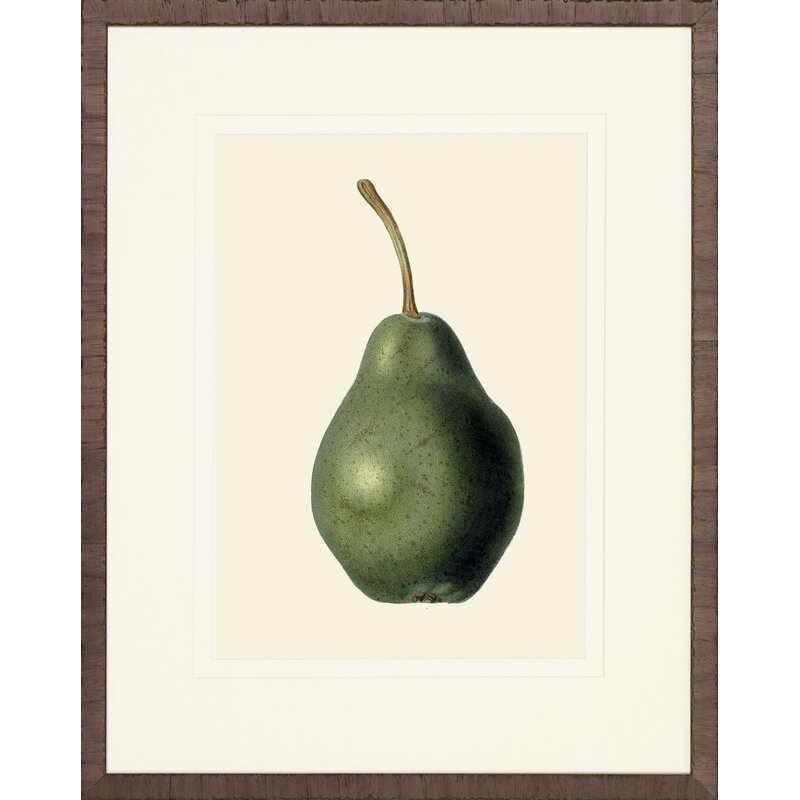 Pears Framed Painting Print