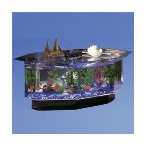 fish tanks & aquariums you'll love | wayfair