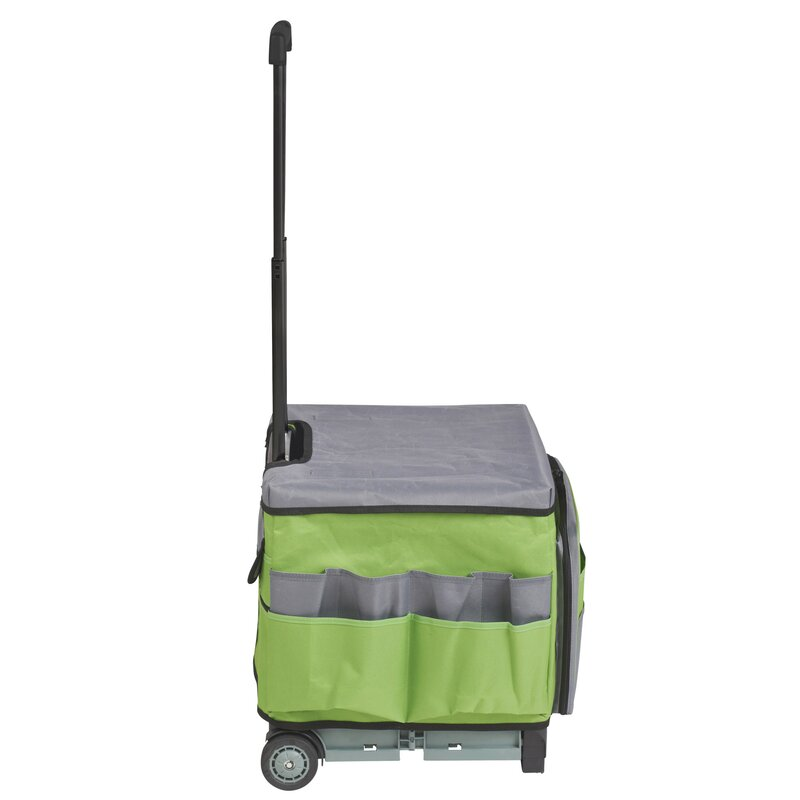 Universal Rolling Cart And Organizer Bag