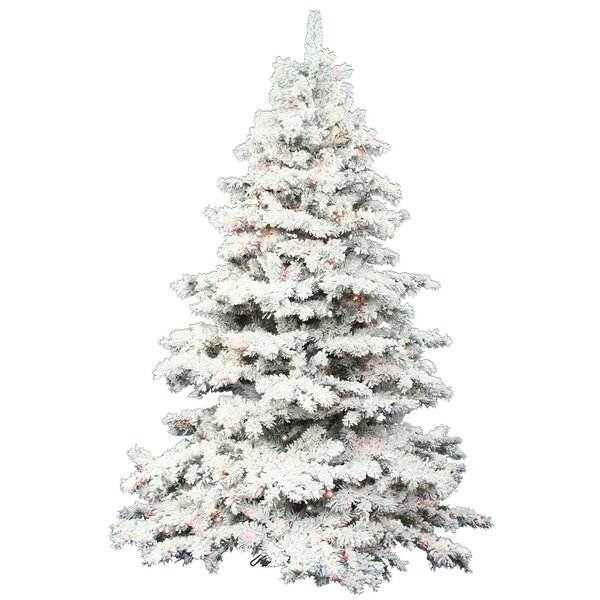 The Holiday Aisle Flocked Alaskan 7 5 White Artificial Christmas Tree With 900 Dura Lit Clear Lights Stand Reviews Wayfair