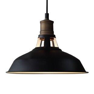 Large dome pendant light wayfair 1 light dome pendant aloadofball Choice Image