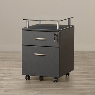 Exceptionnel Onway 2 Drawer Mobile File Cabinet