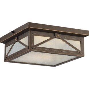 outdoor flush mount light seeded glass sagebrush 1light outdoor flush mount ceiling lights youll love wayfair