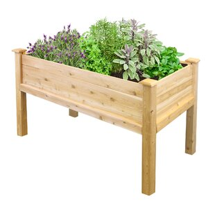 Idella 2 Ft X 4 Ft Raised Garden