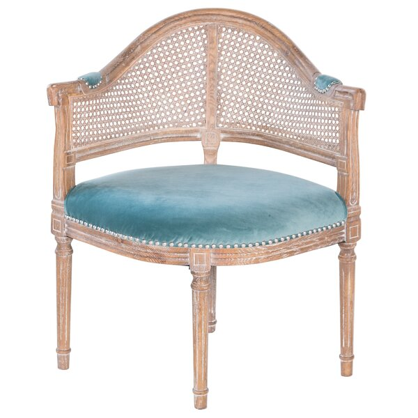 sc 1 st  Wayfair & Joseph Allen Fae French Antique Cane and Velvet Barrel Chair | Wayfair