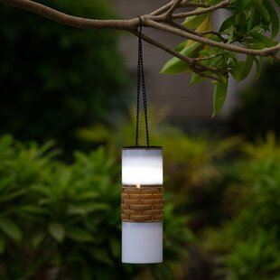 Pickett Solar Accent 1 Light Outdoor Hanging Lantern