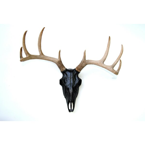 Near And Deer Faux Taxidermy Buck Skull Wall Décor