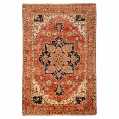 Bloomsbury Market Burlin Hand-Knotted Wool Cherry Area Rug Rug Size: Rectangle 5'6 x 8'6