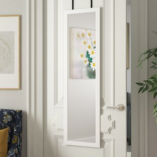 Ordinaire Hanging Door Mirror | Wayfair
