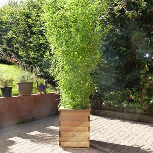 Tall Outdoor Planter Tall outdoor planters wayfair tall planter box workwithnaturefo