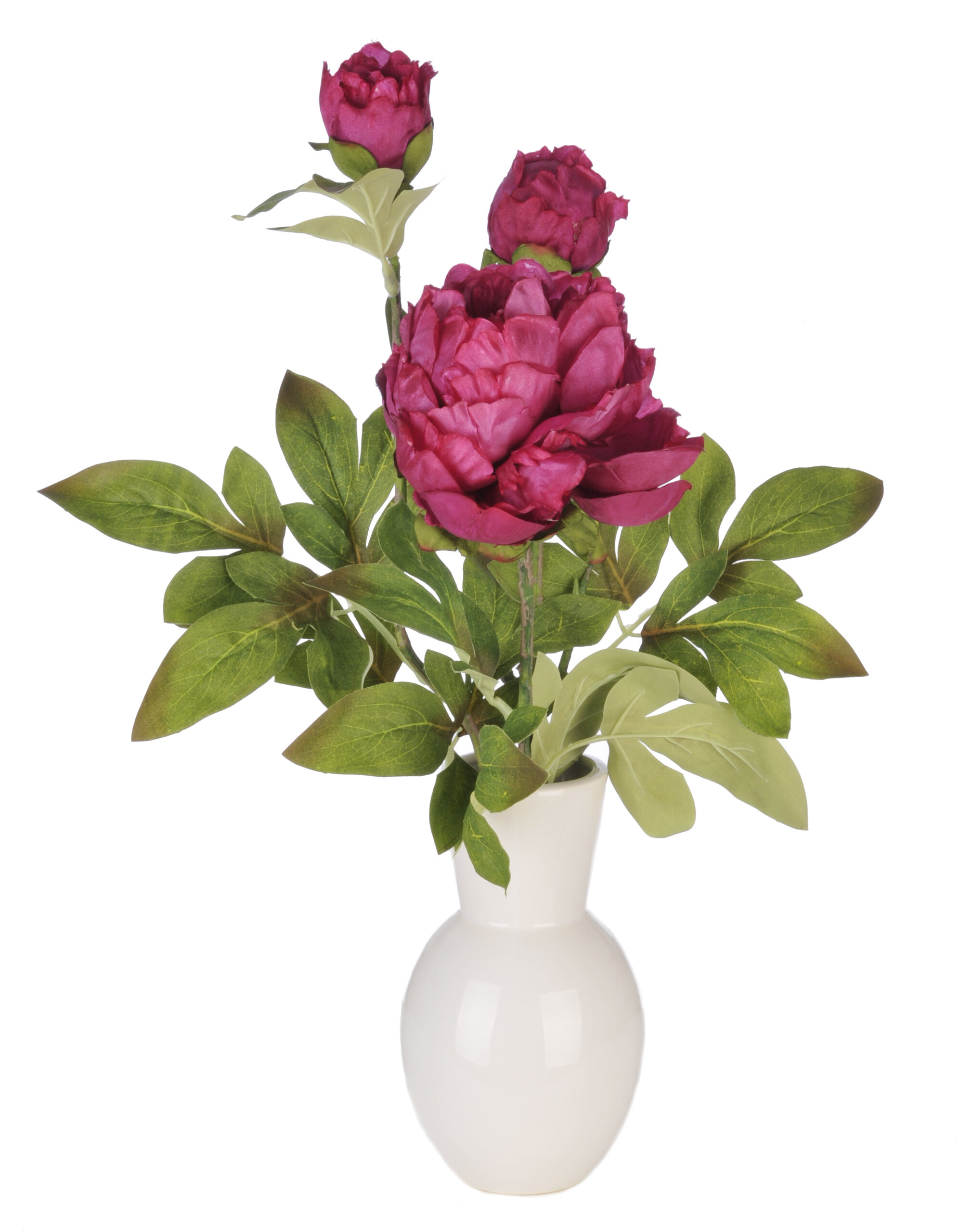 House of silk flowers artificial peony in ceramic vase reviews house of silk flowers artificial peony in ceramic vase reviews wayfair reviewsmspy