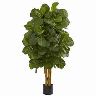 faux plants & trees | birch lane Silk Plants and Trees