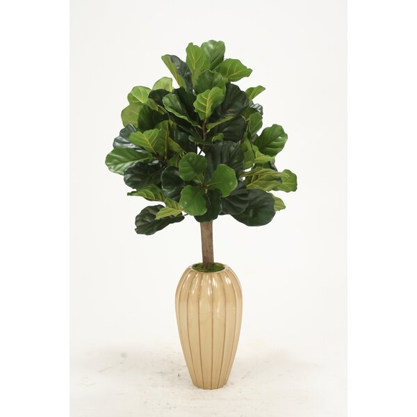 Distinctive Designs Fiddle Leaf Fig Floor Tree In Decorative Vase
