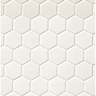 Hexagon 2 X Porcelain Mosaic Tile In Matte White