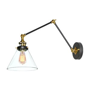 Industrial Clear Glass 1-Light Swing Arm