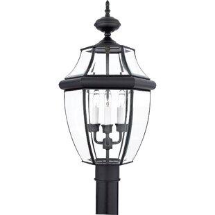 Lamp posts post lights joss main save to idea board workwithnaturefo