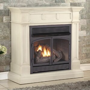 Dual Fuel Ventless Natural Gas/Propane Fireplace by Duluth Forge
