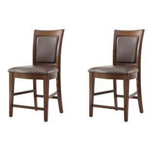 Owen Dining Chair (Set of 2)