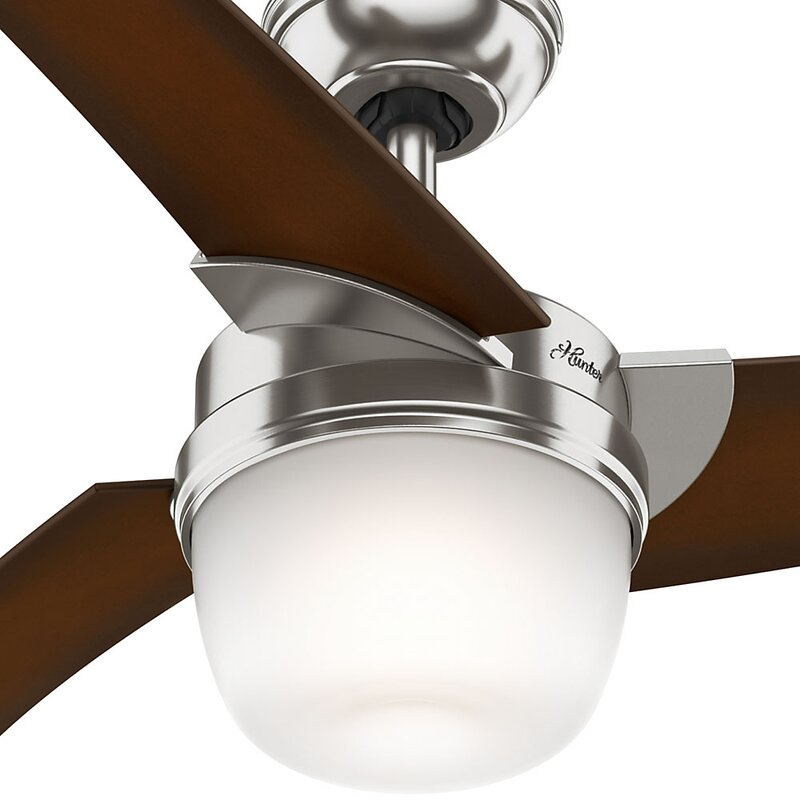 Hunter fan eurus 54 inch single light 3 blade ceiling fan reviews eurus 54 inch single light 3 blade ceiling fan aloadofball Gallery